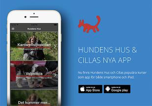 hundens-hus-cilla-app